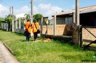 Equipes de Vigilância Ambiental estiveram na Nova Nordeste